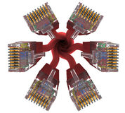 Range of connectors rj45 Royalty Free Stock Image