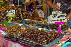 A range of deep fried insects for sale including grasshoppers and weevils stock image