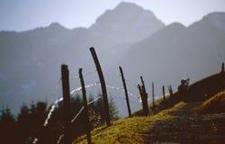 Range fence Royalty Free Stock Images
