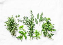 Range of fragrant garden herbs on a light background-tarragon, thyme, oregano, basil, sage, mint. Healthy ingredients, top view. C. Opy space, flat lay royalty free stock photos