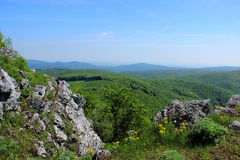 Range of Mountains View. Green Chain of Mountains Panorama with Rocks and Yellow Flowers Royalty Free Stock Images