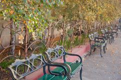 Range of nice wooden benches with metal armrests and backrests in public park in autumn royalty free stock photography