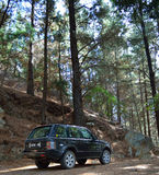 Range rover in a forest Royalty Free Stock Images