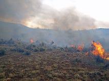Rangeland πυρκαγιά στοκ εικόνα με δικαίωμα ελεύθερης χρήσης