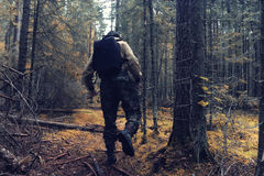 Ranger in autumn  forest Stock Images