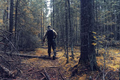Ranger in autumn  forest Stock Photography