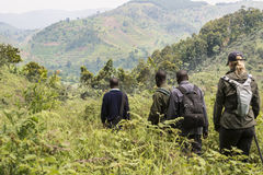 Ranger and tourist in Bwindi National Park. Ranger and Tourist coming back from a mountain gorilla trekking tour in the jungle of Bwindi Impenetrable National Stock Image