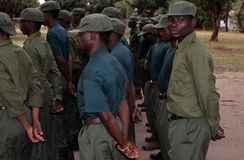 Rangers during a drill in the Gorongosa National Park Royalty Free Stock Images