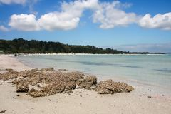 Rangiputa Beach, Northland, New Zealand 3 Royalty Free Stock Photo