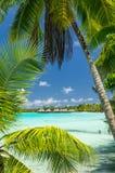 Rangiroa atol, Francuski Polynesia zdjęcie royalty free