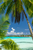 Rangiroa atoll, French Polynesia Royalty Free Stock Photography