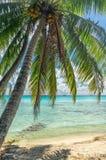 Rangiroa atoll, French Polynesia Royalty Free Stock Image