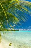 Rangiroa atoll, French Polynesia Royalty Free Stock Photos
