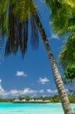 Rangiroa atoll, French Polynesia Stock Images