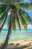 Rangiroa atoll, French Polynesia Stock Photography