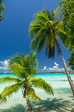 Rangiroa atoll, French Polynesia Stock Photos