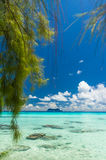 Rangiroa atoll, French Polynesia Royalty Free Stock Images