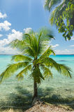 Rangiroa atoll, French Polynesia Royalty Free Stock Image