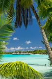 Rangiroa atoll, French Polynesia Royalty Free Stock Photography