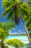 Rangiroa atoll, French Polynesia Royalty Free Stock Photo
