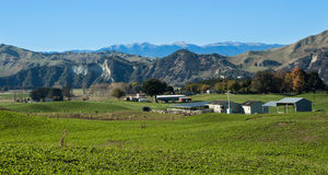 Rangitikei Farmland Stock Photo