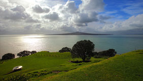 Rangitoto-Insel von North Point Stockfoto