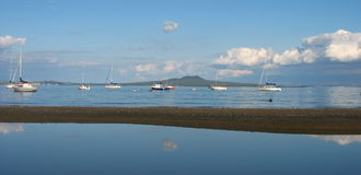 Rangitoto Island. Royalty Free Stock Photo
