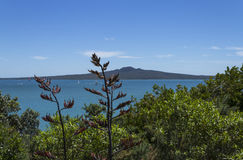 Rangitoto Island Auckland New Zealand. Rangitoto Island View from Mission Bay Beach Auckland New Zealand Royalty Free Stock Photography