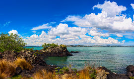 Rangitoto Island, district of Auckland City. New Zealand Royalty Free Stock Photos