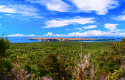 Rangitoto Island, district of Auckland City. New Zealand Royalty Free Stock Images
