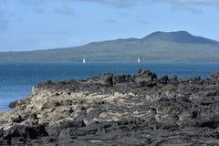 Rangitoto island from rocks Royalty Free Stock Photography