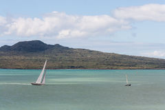 Rangitoto Island with sailing yachts, Stock Image