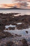 Rangitoto island at sunset Royalty Free Stock Photos