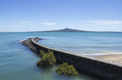 Rangitoto Island View from Mission Bay Beach Auckland New Zealand. Favorite Place for Beach Activity Royalty Free Stock Photo