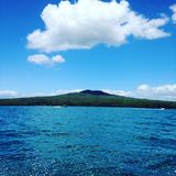 Rangitoto. Volcano Auckland New Zealand stock photography