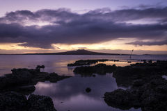Rangitoto wyspa Obrazy Royalty Free