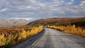 Rango de Alaska en Denali Imagenes de archivo
