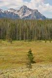 Rango de montaña del diente de sierra en Idaho fotos de archivo