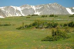 Rango Wyoming Nevado fotos de archivo