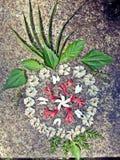 Rangoli di disegni del fiore Immagine Stock