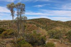 Rangos del Flinders, Australia fotos de archivo