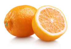 Rangpur (lemandarin) - citrus fruit, hybrid mandarin orange and lemon. Rangpur (lemandarin) - citrus fruit, hybrid between mandarin orange and lemon isolated on royalty free stock image