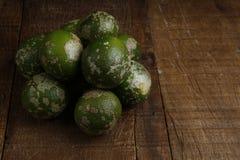 Rangpur limefrukt eller limaocravo i portugisiskt royaltyfria bilder