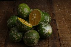 Rangpur limefrukt eller limaocravo i portugisiskt arkivbilder