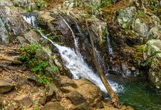 Różani rzeka spadki Fotografia Royalty Free