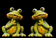 Ranidae, Amphibian, Frog, Toad Stock Photos