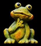 Ranidae, Amphibian, Frog, Tree Frog stock photo
