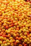 Ranier-Kirschen im Markt stockbild