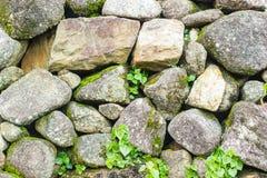 Ranitetextuur - abstracte de oppervlaktegra van de ontwerp grijze naadloze steen Royalty-vrije Stock Afbeeldingen