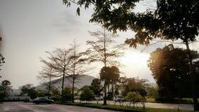 Ranków promienie słońce Błyszczą Energetically Obraz Royalty Free